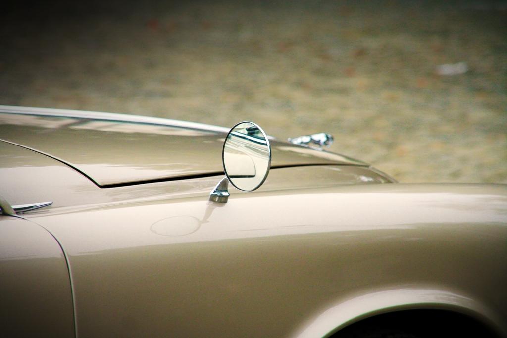 Jaguar 420 05 art